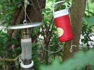Thermos hanging from a tree